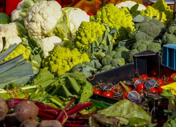Eating Diverse Diet – as Recommended – May Not Be Healthy, Study Finds